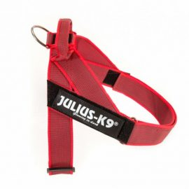 Julius-K9 Pettorina IDC-Belt Harness mini-mini red